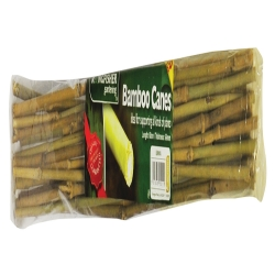 60cm Bamboo Canes 20 pack