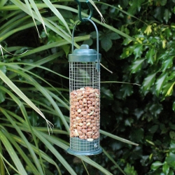 Green Standard Bird Nut Feeder